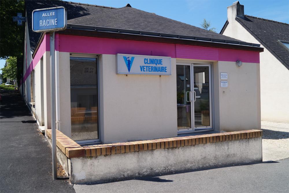 clinique-veterinaire-carquefou